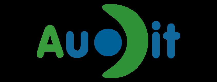 audit logo